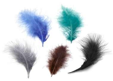 3190013 Marabu Federn 10 St. blau